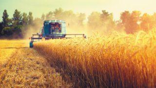Mezőgazdaság tűzmegelőzés